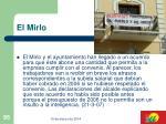 el mirlo95