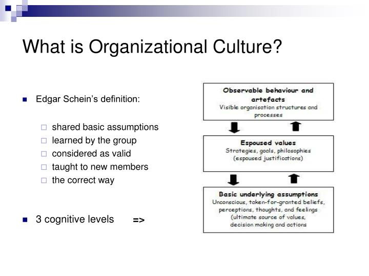 what is organisational culture