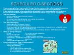 scheduled c sections