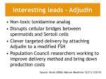 interesting leads adjudin