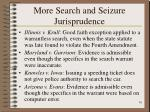 more search and seizure jurisprudence