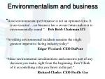 environmentalism and business
