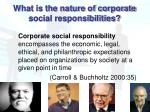 what is the nature of corporate social responsibilities