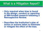 what is a mitigation report