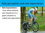 role perception and role expectation1