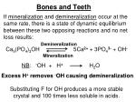 bones and teeth