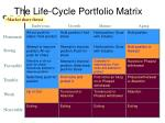 the life cycle portfolio matrix3