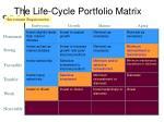 the life cycle portfolio matrix4