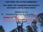 how were the levites numbered1
