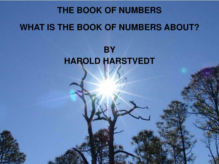 the book of numbers n.