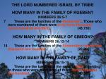 the lord numbered israel by tribe