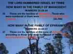 the lord numbered israel by tribe2