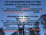the lord numbered israel by tribe3