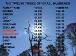 the twelve tribes of israel numbered