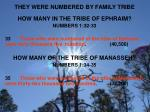 they were numbered by family tribe3