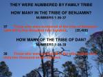 they were numbered by family tribe4