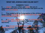 what did joshua and caleb say