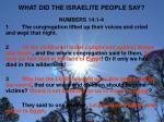 what did the israelite people say