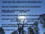 what did the lord do to the israelites