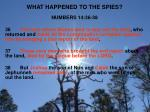 what happened to the spies