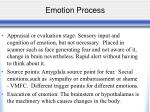 emotion process