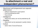 is attachment a real and independent phenomenon