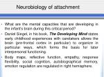neurobiology of attachment2