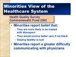 minorities view of the healthcare system