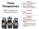 three perspectives