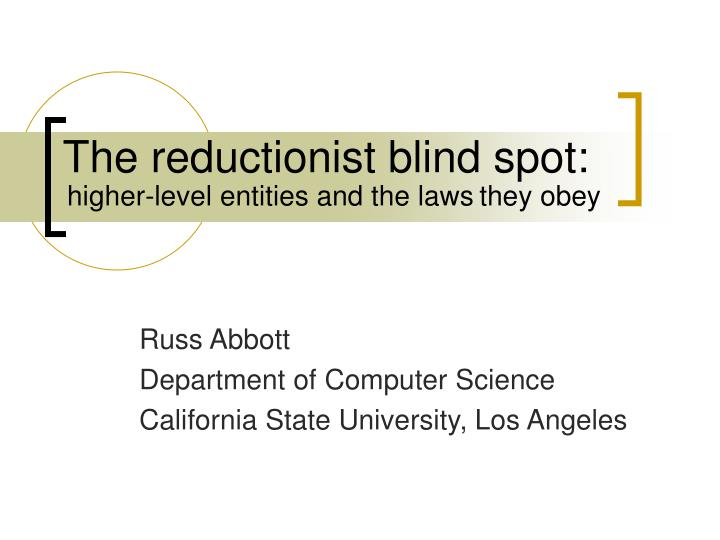 the reductionist blind spot n.