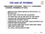 the age of promise2