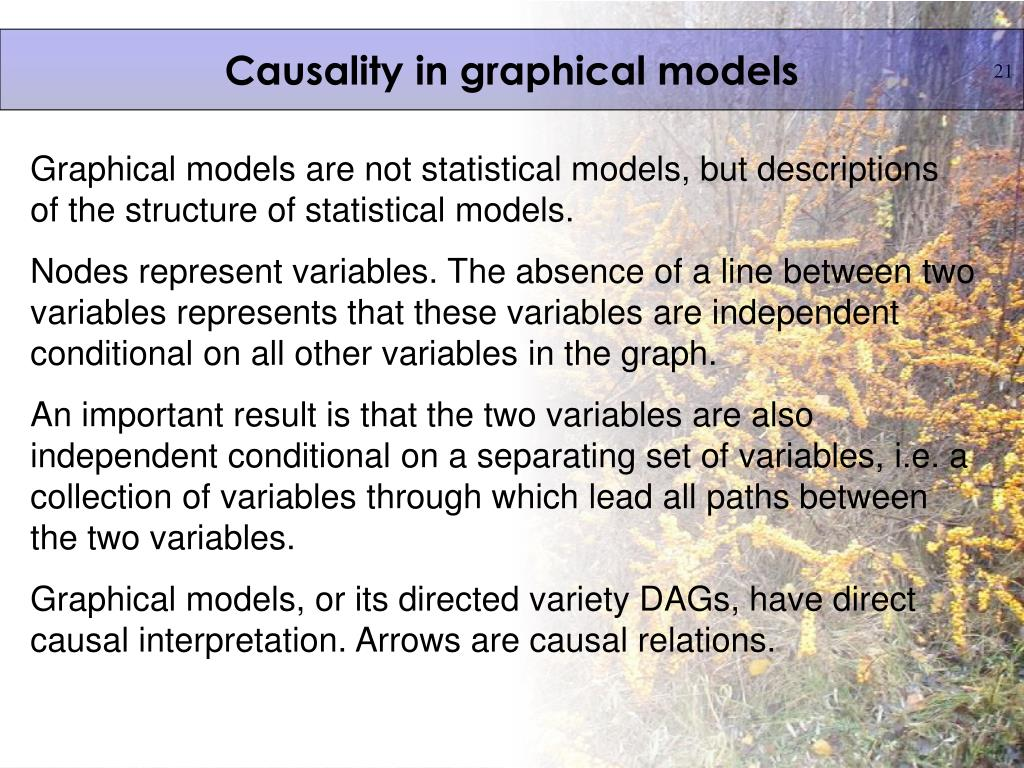 Causality in graphical models