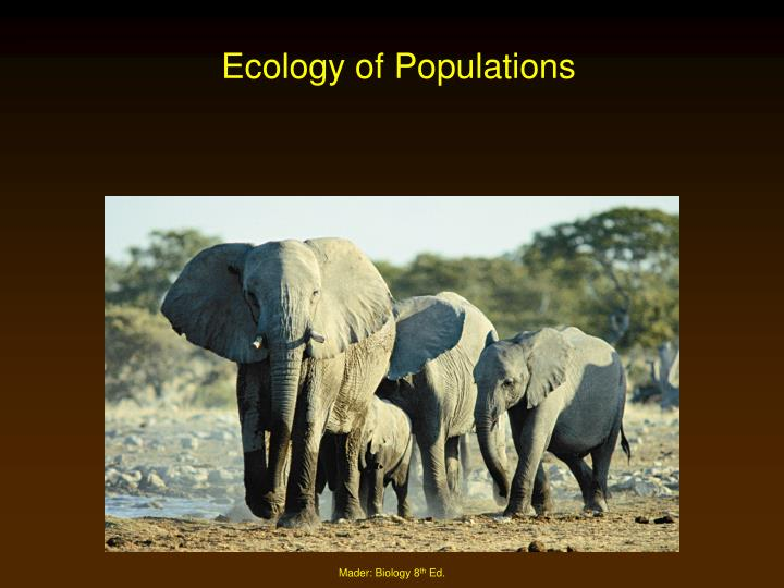 ecology of populations n.