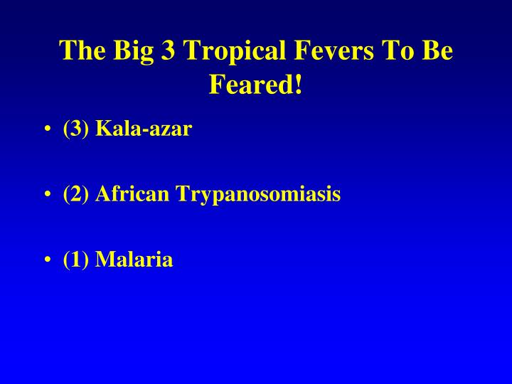 The Big 3 Tropical Fevers To Be Feared!