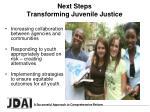 next steps transforming juvenile justice
