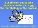 but efficient cause also depends on the parts and the morphology of the process