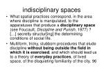 indisciplinary spaces