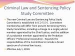 criminal law and sentencing policy study committee
