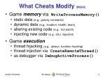 what cheats modify ng08
