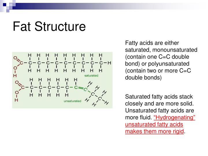 fat structure n.