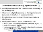 the mechanisms of planting rights in the eu 1