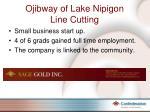 ojibway of lake nipigon line cutting
