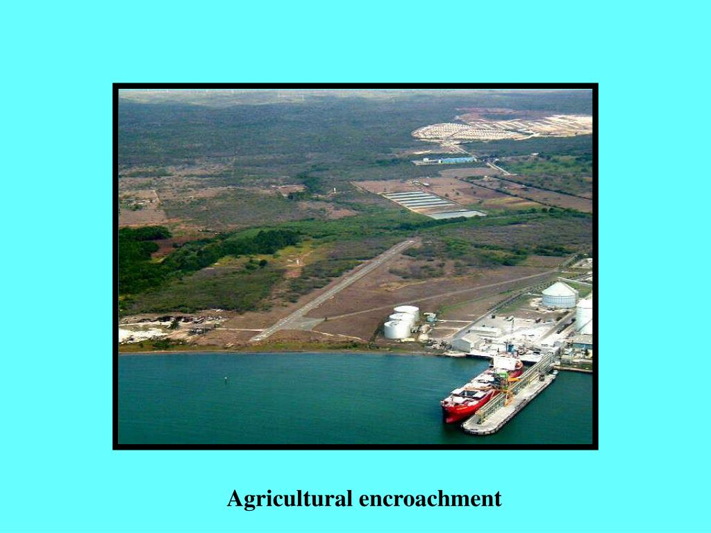 Agricultural encroachment