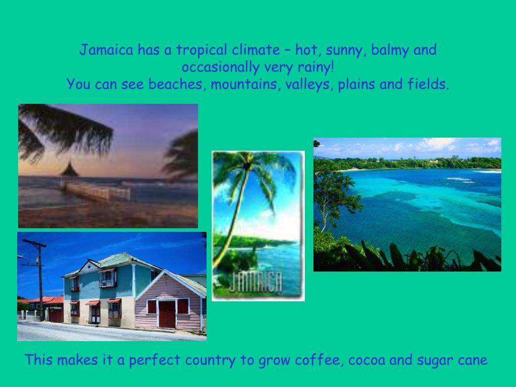 Jamaica has a tropical climate – hot, sunny, balmy and occasionally very rainy!