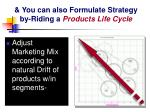you can also formulate strategy by riding a products life cycle
