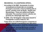 meanwhile in lusophone africa