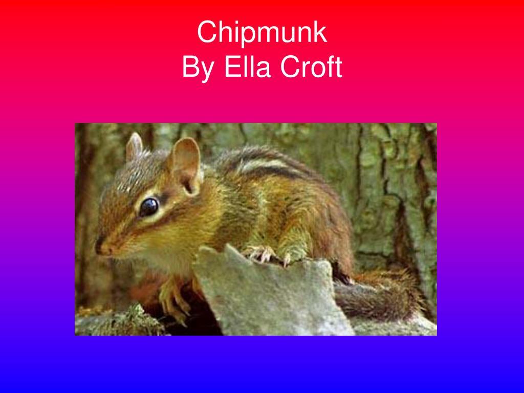 chipmunk by ella croft l.