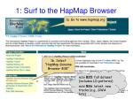 1 surf to the hapmap browser