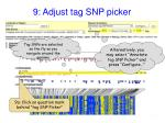 9 adjust tag snp picker