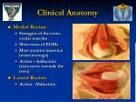 clinical anatomy14
